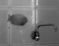 Fish and Faucet